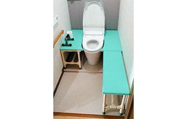 トイレでの移乗を行いやすくしたい(問題解決のポイント)